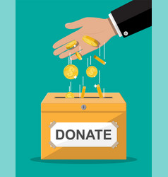 donation box with golden coins vector image