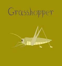 Flat on background grasshopper vector