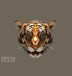 low polygon tiger head pattern background eps 10 vector image