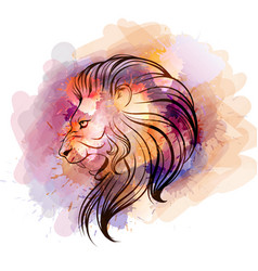 watercolor lion head vector image