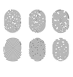 set of fingerprint types with twisted lines signs vector image