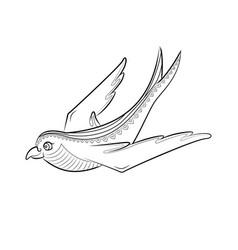 zen tangle swallow zentangle bird color vector image