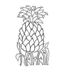 hawaii typography banner pineapple sketch vector image