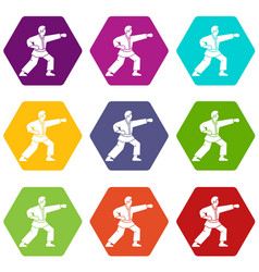 Aikido fighter icon set color hexahedron vector