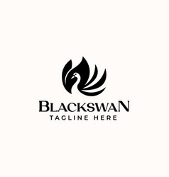 black swan logo template in isolated white vector image