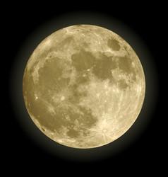 Full moon photoreal yellow vector