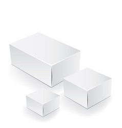 white package box packaging mock up template vector image