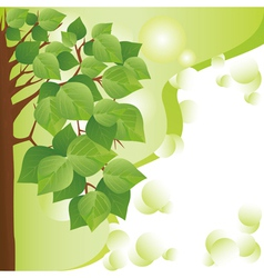 Eco background with tree Place for text vector image
