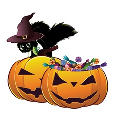 Halloween card with pumpkins and cat vector image vector image