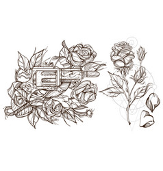 roses and a gun a set of outline with sketches of vector image vector image