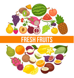 fresh organic fruits and healthy natural berry vector image