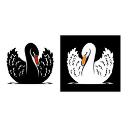 Black and white swans vector