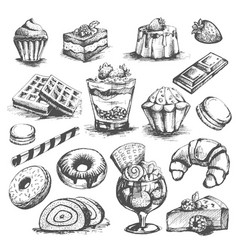 Cakes and cupcakes pastry bakery desserts vector