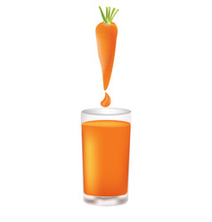 carrot juice with whole carrot and juice drop vector image