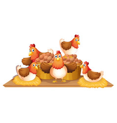 Chickens and eggs in basket vector