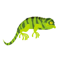 Green chameleon icon cartoon style vector