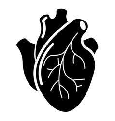 human heart organ icon simple style vector image