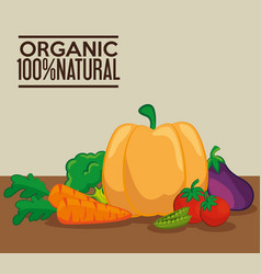 Organic vegetables design vector