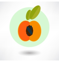 peach vector image