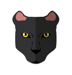 wild animal jaguar vector image