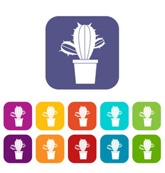 Cactus houseplants in pot icons set flat vector