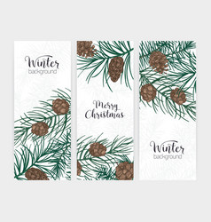 collection of elegant vertical festive winter vector image