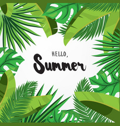 Hello summer greeting card with palm leaves vector