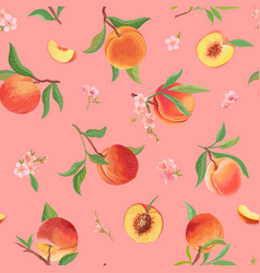 watercolor peach texture tropic fruits leaves vector image
