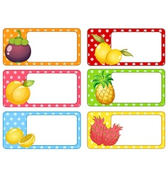 Square labels with fresh fruits vector image