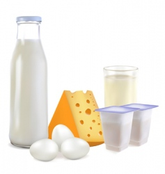 dairy products and eggs vector image