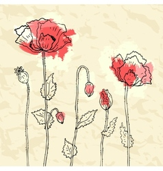 Red poppies on a crumpled paper background vector image