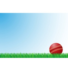 sports grass field 04 vector image vector image
