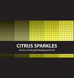 Circle pattern set citrus sparkles seamless vector