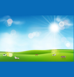 Green grass with sun and blue sky blurred light vector