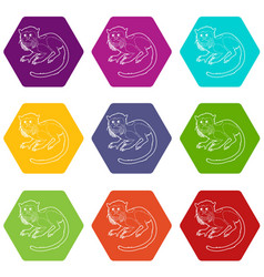 imperial tamarin icons set 9 vector image