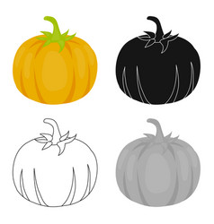Pumpkin icon cartoon singe vegetables icon from vector