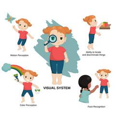 human senses vector image