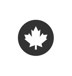 maple leaf icon graphic design template isolated vector image
