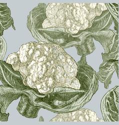 Pattern of ripe cauliflower vector