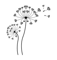 silhouette dandelion with stem and pistil and fly vector image