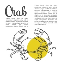 Sketch contour crab vector