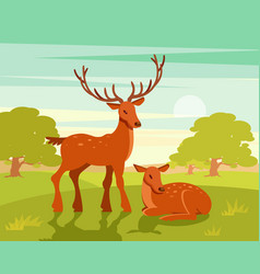 summer wildlife landscape couple of deers on vector image