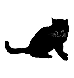 Black silhouette of a cat vector image