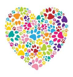 Heart paw print vector image