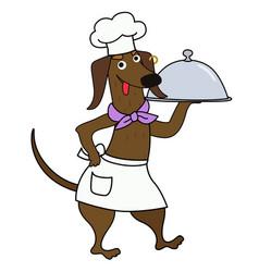 Cartoon dachshund chef with a dish vector
