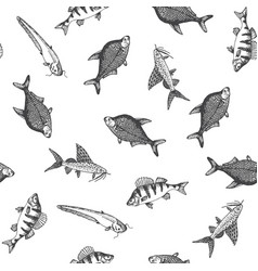 Fish pattern sketch of carp hand drawn vector