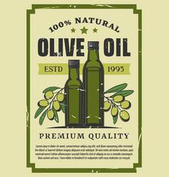 Olive vegetable oil in glass bottle retro poster vector
