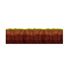 Soil ground layers with grass surface vector