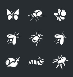 set of various insects icons vector image