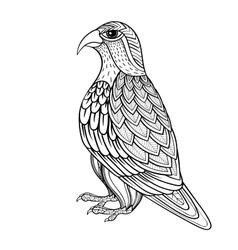Zentangle Falcon bird hawk of prey vector image